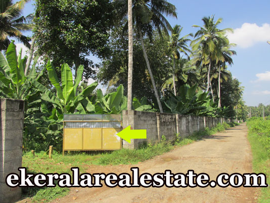 5 lakhs per Cent house plot for sale at Pappanamcode Trivandrum real estate kerala trivandrum