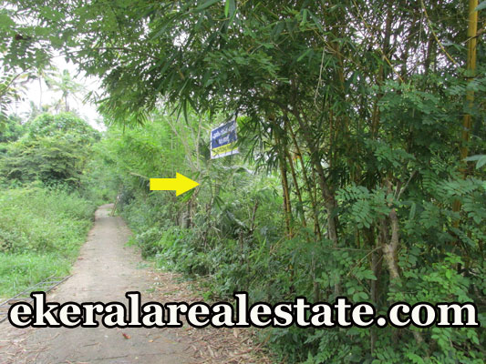 kerala land plot for sale at Kadakkavoor Trivandrum real estate kerala trivandrum