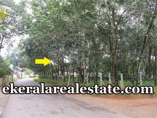 residential land for sale at Panachavila Anchal Kollam real estate kollam properties sale