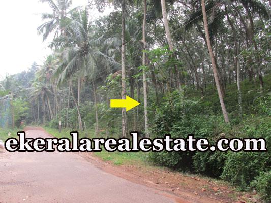 kerala house plot for sale at Kokkottela Aryanad Trivandrum real estate kerala trivandrum