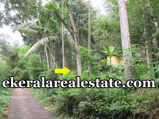 plot for sale at Mylam Aruvikkara Trivandrum real estate kerala trivandrum