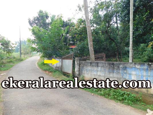 17 Cent house plot for sale at Mavinmoodu Kallambalam Trivandrum Kallambalam real estate kerala