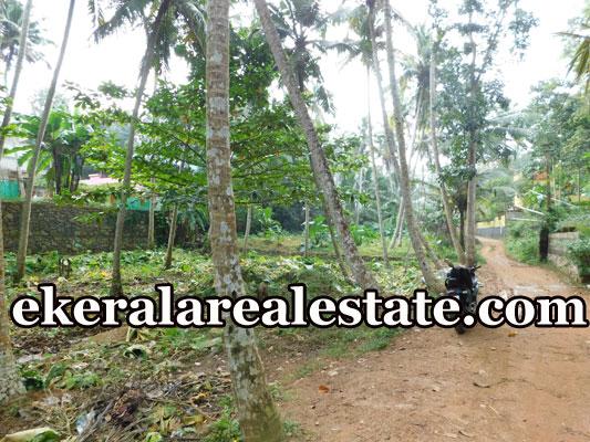 real estate kerala land for sale at Marayamuttom Neyyattinkara Trivandrum Neyyattinkara real estate kerala
