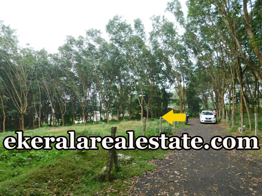 land plot for sale at Pothencode Sreekariyam Trivandrum Sreekariyam real estate kerala