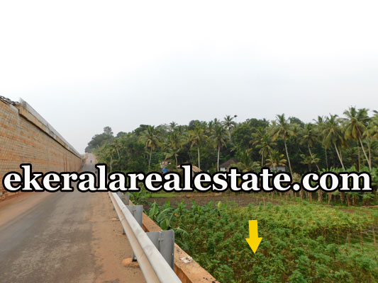 land plot for sale at Mukkola Vizhinjam Trivandrum Vizhinjam real estate kerala