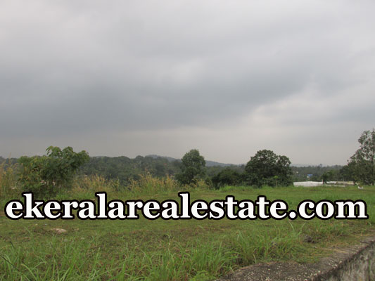 House Plots Sale at Manikanteswaram Peroorkada Trivandrum real estate kerala