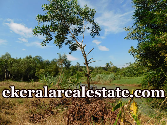 urgent land sale at Kalamachal Vamanapuram Trivandrum Vamanapuram real estate kerala