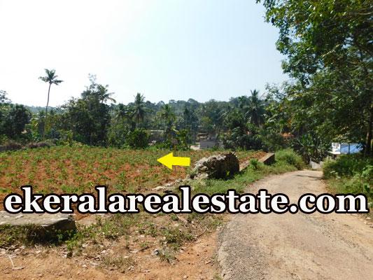lorry access land plot for sale at Pothencode Sreekaryam Trivandrum real estate kerala