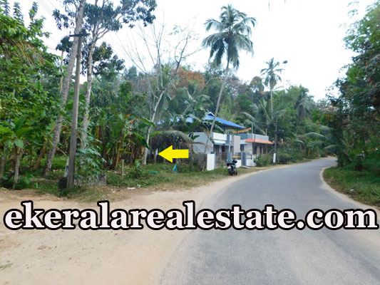 road frontage house plot for sale at Kallar Ponmudi Trivandrum Kallar real estate properties sale