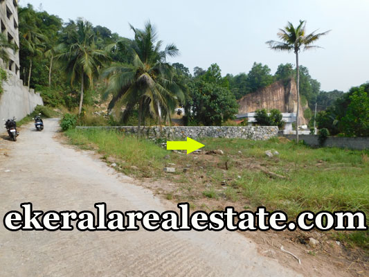 Below 5.5 Lakhs Per Cent Sale at Thrippadapuram Technopark Kazhakuttom real estate properties sale