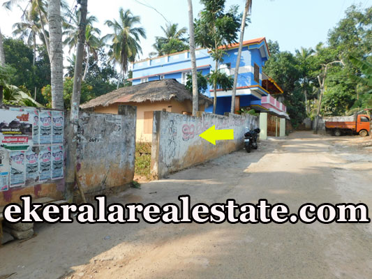 5 lakhs per Cent plot for sale at Poovar Trivandrum Poovar real estate kerala