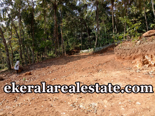 2 lakhs per Cent house land plot for sale at Malamukal Nettayam Trivandrum Nettayam real estate propertie sale