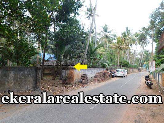 house plot for sale at Poovar Trivandrum Kerala Poovar real estate properties sale