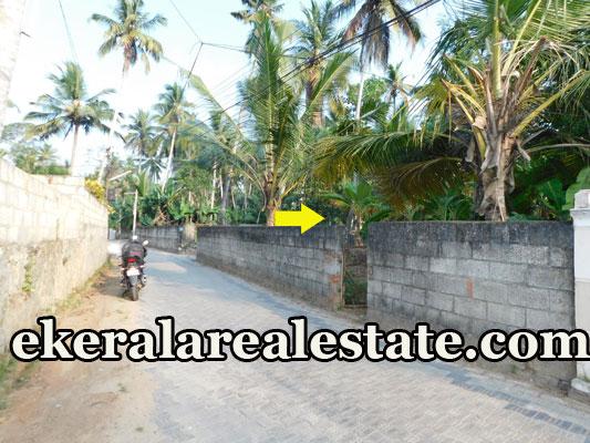 house plot for sale at Anandavalleswaram Nagar Mannanthala Trivandrum Mannanthala real estate properties sale