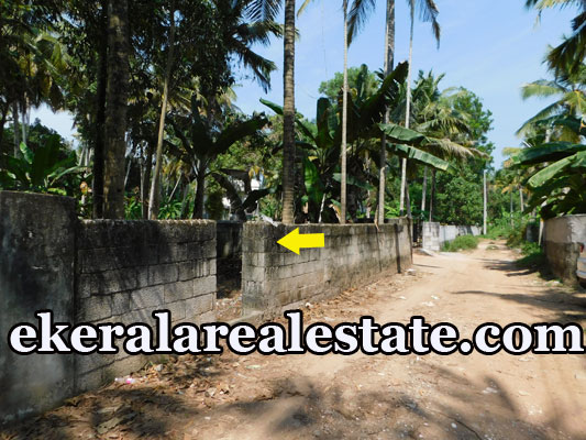 4 Cents lorry plot for sale at Kurishadi Junction Nalanchira Trivandrum Nalanchira real estate properties sale