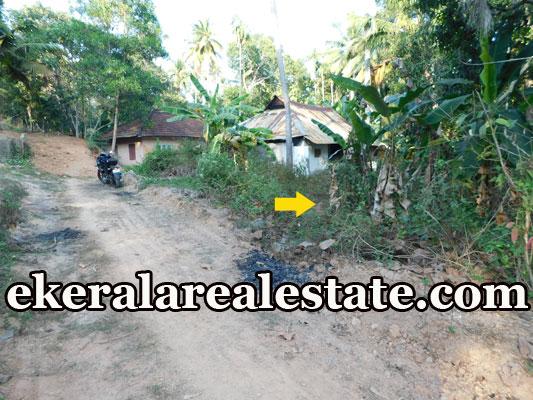 Land Sale at Mukkilkada Kariyam Sreekariyam Trivandrum Kariyam real estate p roeprties sale