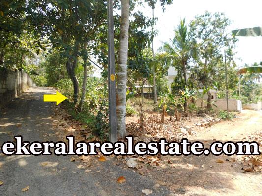 Residential Land Sale at Mangattukadavu Perukavu Thirumala Trivandrum Thirumala  real estate properties sale