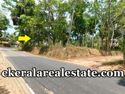 Residential Land Sale at Kattakada Trivandrum Kattakada real estate properties sale