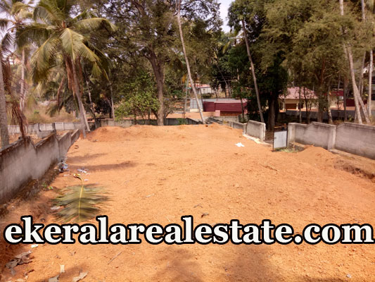 14 lakhs per Cent house plot for sale at Infosys Technopark Trivandrum real estate properties sale