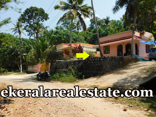 2 bhk house for sale at Karipur Nedumangad Trivandrum Nedumangad real estate properties sale
