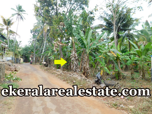 3.75 lakhs per Cent house plot for sale at Mannanthala Trivandrum real estate properties sale