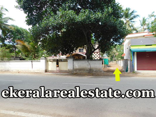16 Cent house house plot for sale at Technopark Kazhakuttom Trivandrum Kazhakuttom real estate property