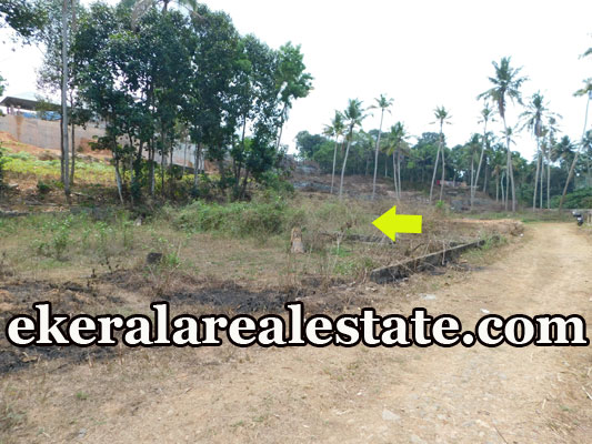 land for sale at Powdikonam Sreekariyam Trivandrum kerala real estate properties