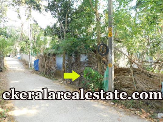 residential house plot for sale at Trivandrum Kaniyapuram real estate properties sale