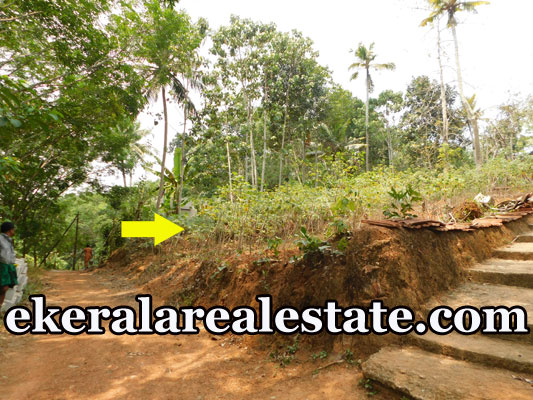 land plot for sale at Near Vengode Pothencode Trivandrum real estate properties sale
