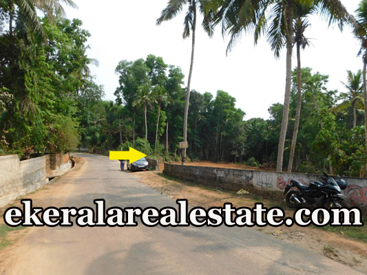 residential land for sale at Manchavilakom Neyyattinkara Trivandrum real estate properties sale