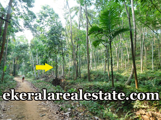 plot for sale at Manchavilakom Neyyattinkara Trivandrum kerala real estate properties sale