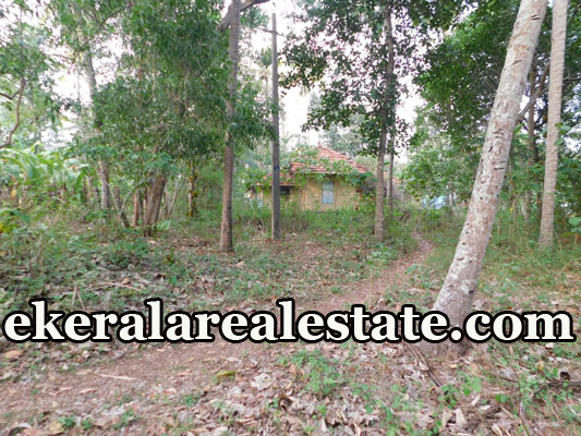 house plot for sale at Varkala Trivandrum Varkala estate properties sale
