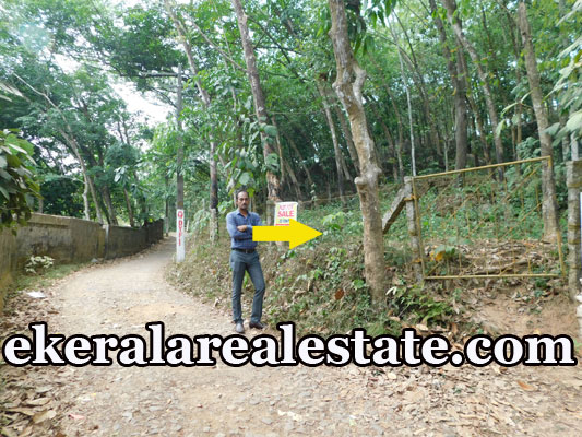 plot for sale at Killy Kattakkada Trivandrum Kattakada real estate properties sale
