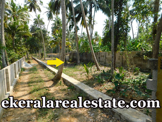 Residential Plots Sale at Maruthoorkadavu Kalady karamana Trivandrum Kalady  real estate