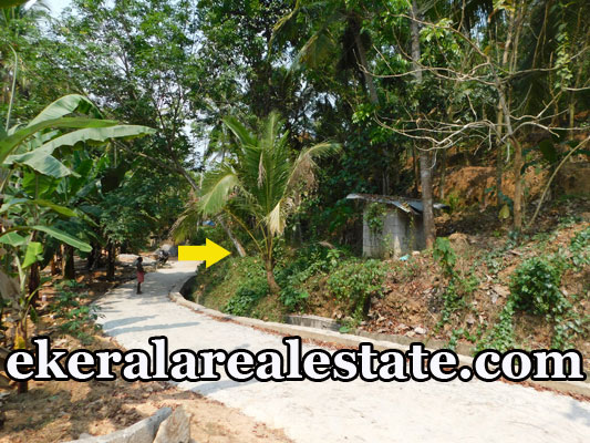 land plots for sale at Kollamkonam Peyad Trivandrum Peyad real estate properties sale