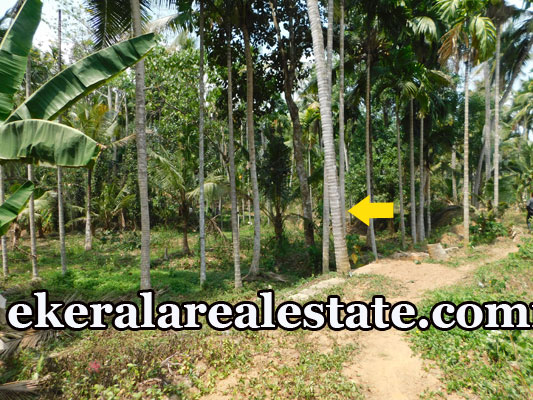 22 Cent land for sale at Karakulam Mullassery Enikkara Peroorkada Trivandrum real estate kerala