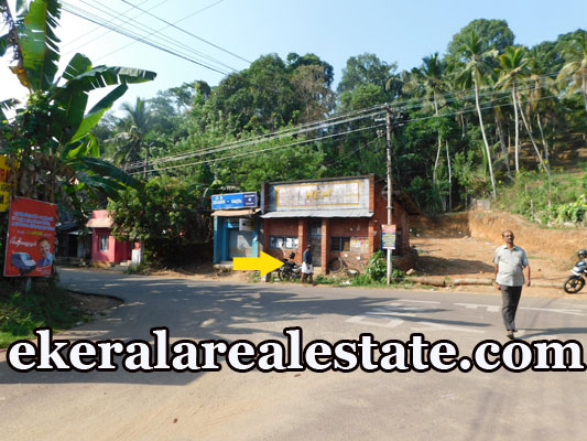 road frontage land for sale at Neyyar Dam Kallikkad Kattakada Trivandrum real estate kerala