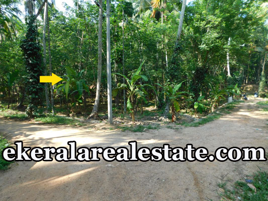 1.60 lakhs per Cent residential land for sale at Kallikkad Kattakada Trivandrum