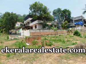 7 lakhs per Cent house plot for sale at Thirumala Vettamukku Road Trivandrum kerala