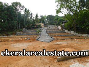 6 Cent plot for sale at Chenkottukonam Sreekariyam trivandrum real estate kerala