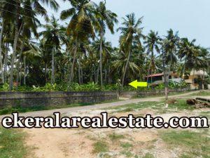 trivandrum real estate 2 Acre land for sale at Balaramapuram trivandrum properties sale