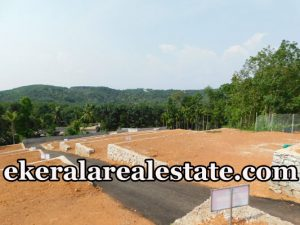 2.5 Cent house plot for sale at Myladi Puliyarakonam Trivandrum real estate kerala