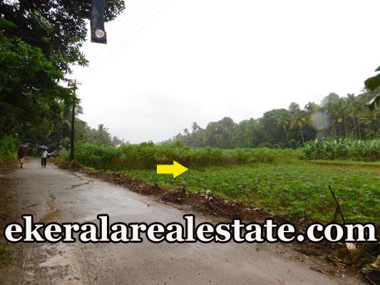 Road frontage land sale at Kundamankadavu