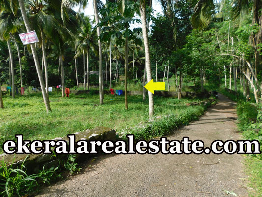 21 cents land plot sale at chanthavila Kazhakuttom